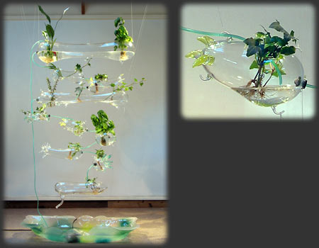 Amy Youngs Hanging Glass Garden Quot Hydroponic Solar Garden Quot