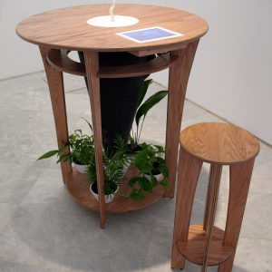 Digestive Table