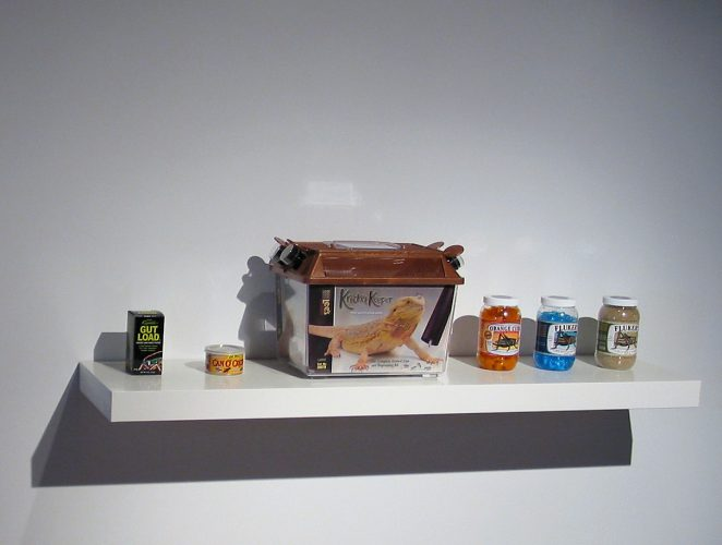 Cricket industry products purchased at pet store and displayed next to  Holodeck for House Crickets installation