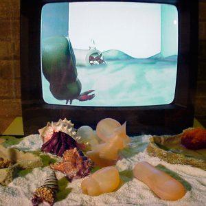 Prototypes for Hermit Crab Shells