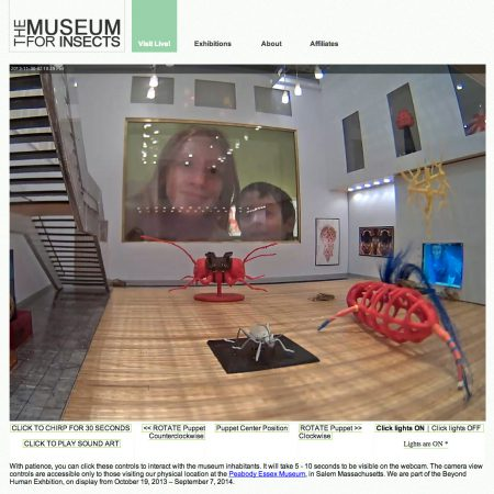 Museum-for-Insects_webcam-view