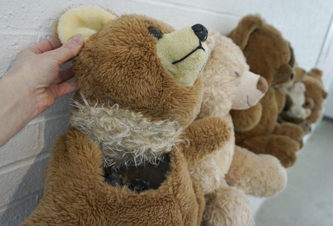 Teddy Bear Worm Tamer