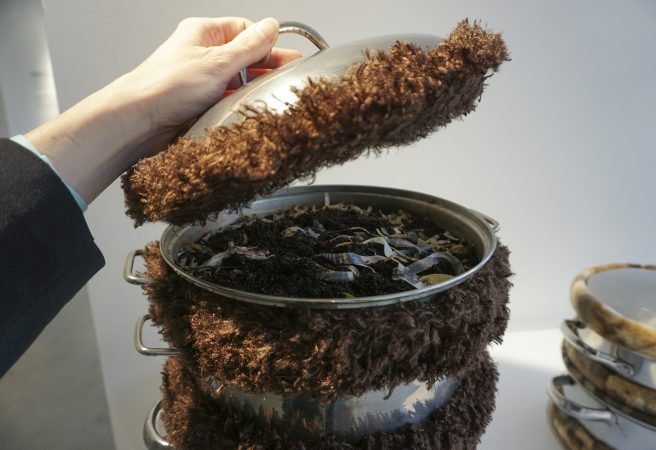 Worm Cozy Cookpot open