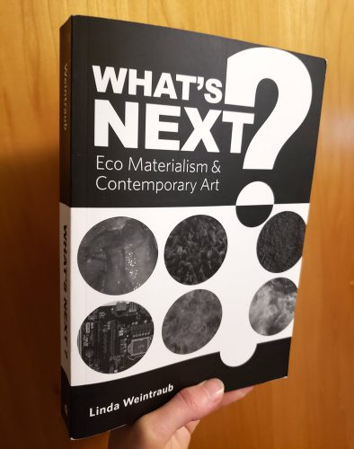Eco Materialism book