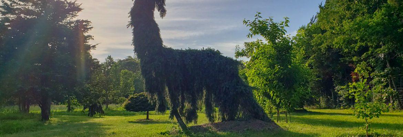 Folly Tree Arboretum Residency